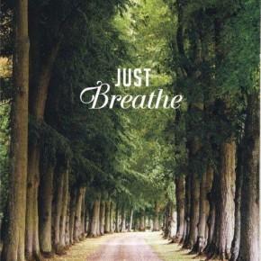 たかが呼吸されど呼吸